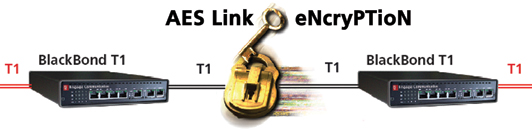 AES encryptedT1diagram web